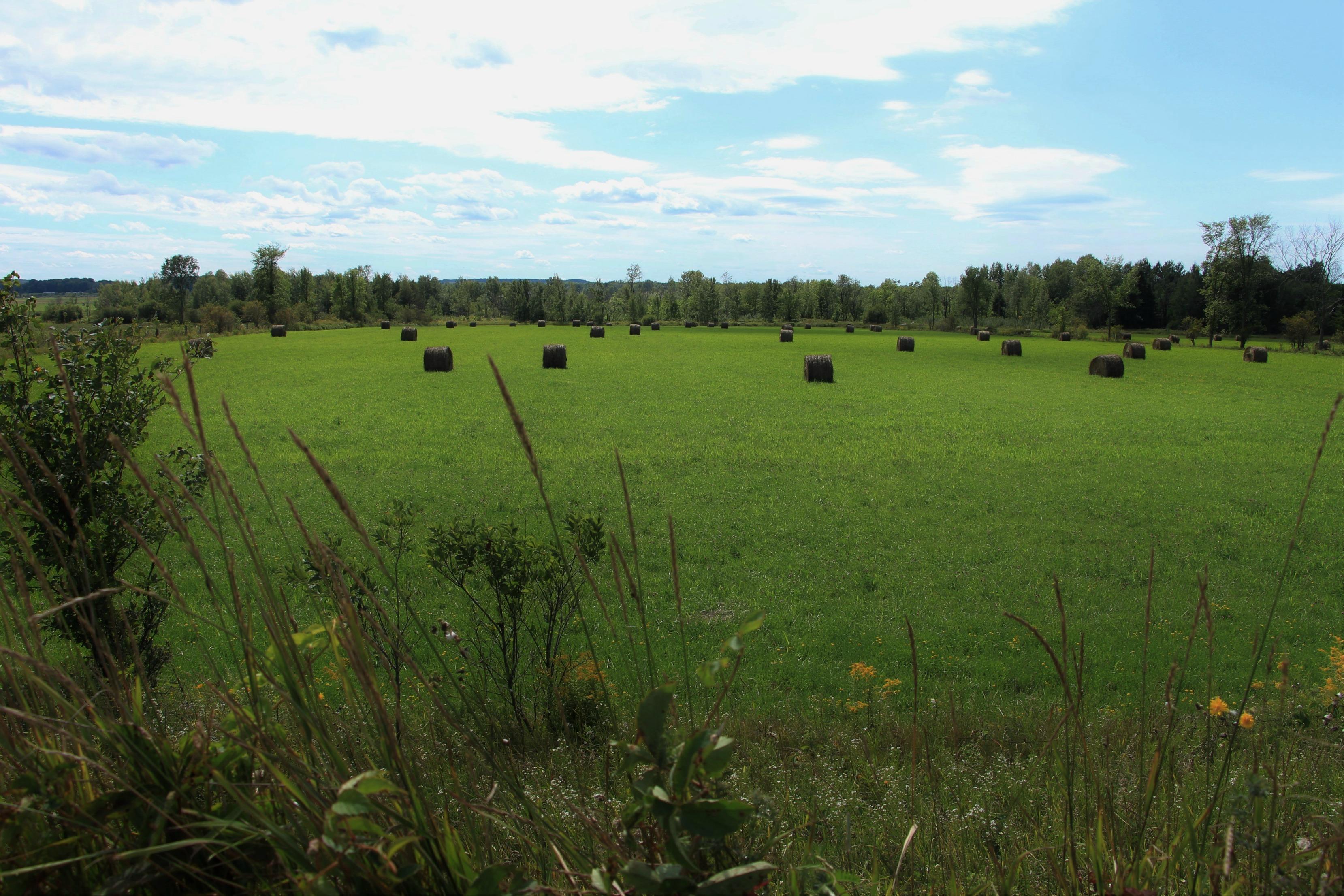 paysage Pontiac