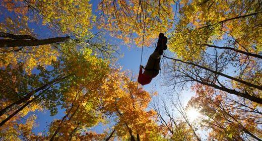 chutes-coulonge_automne
